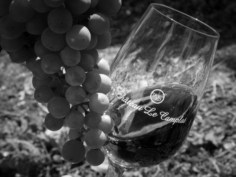 Chateau-Le-Camplat-gamme-vin-cotes-blaye